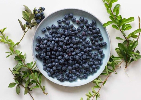 blueberry_arugula_salad_lemon_dressing_sopha_hsin-7